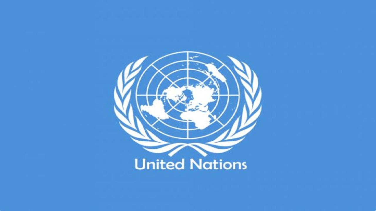 UN में कश्मीर का मुद्दा उठाने पर भारत ने पाकिस्तान को फिर लताड़ा, कही ये बात