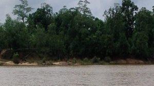 छत्तीसगढ़: ग्रामीणों के लिए काल साबित हो रही इंद्रावती नदी, एक तरफ नक्सलियों का खतरा तो दूसरी तरफ….