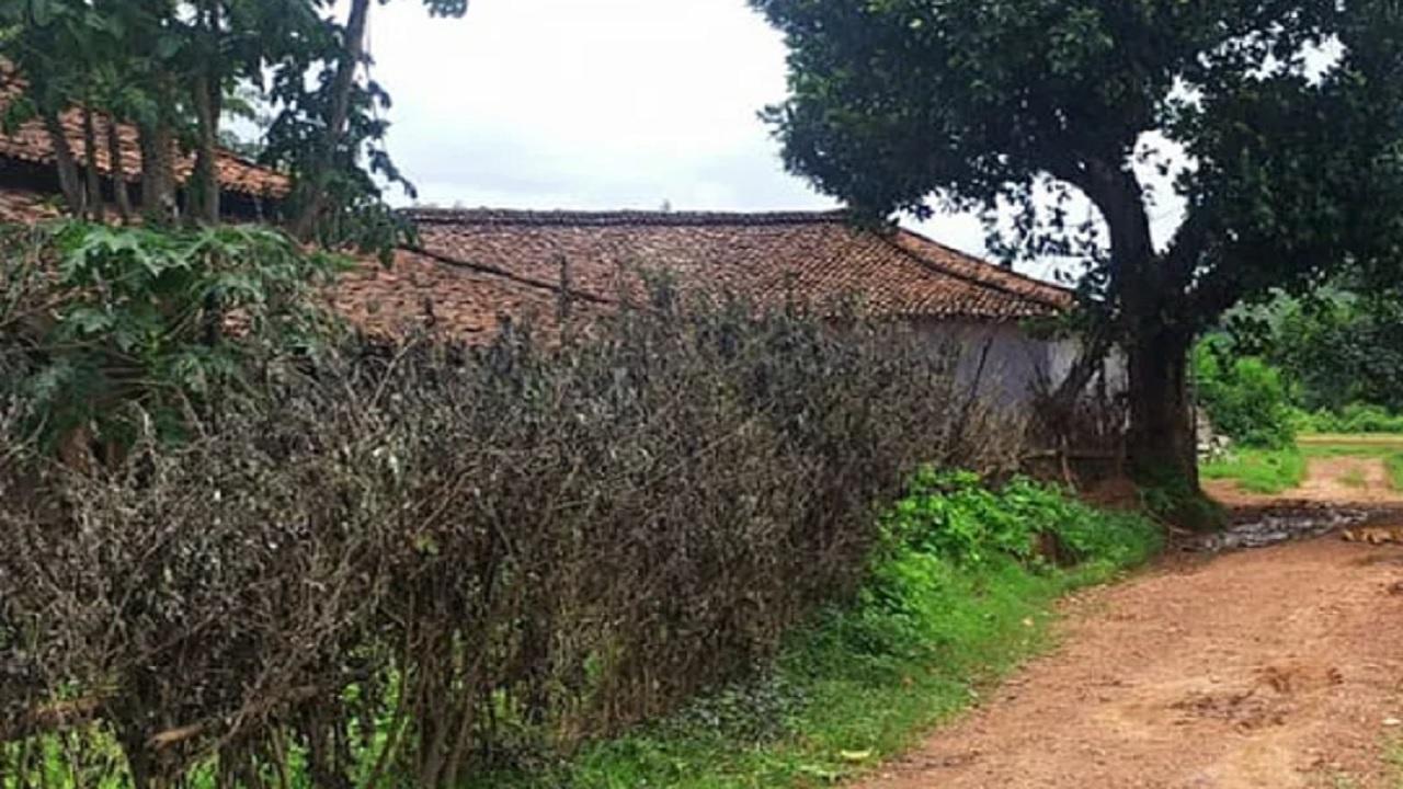 झारखंड: गुमला के तबेला गांव में नक्सली मूवमेंट बंद हुआ, विकास की उम्मीद में ग्रामीण