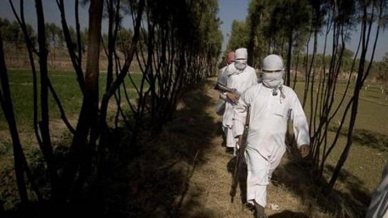 तालिबानी लड़ाकों की मदद के लिए पाकिस्तान के करीब 6,000 आतंकी अफगानिस्तान में घुसे: यूएन की रिपोर्ट में खुलासा