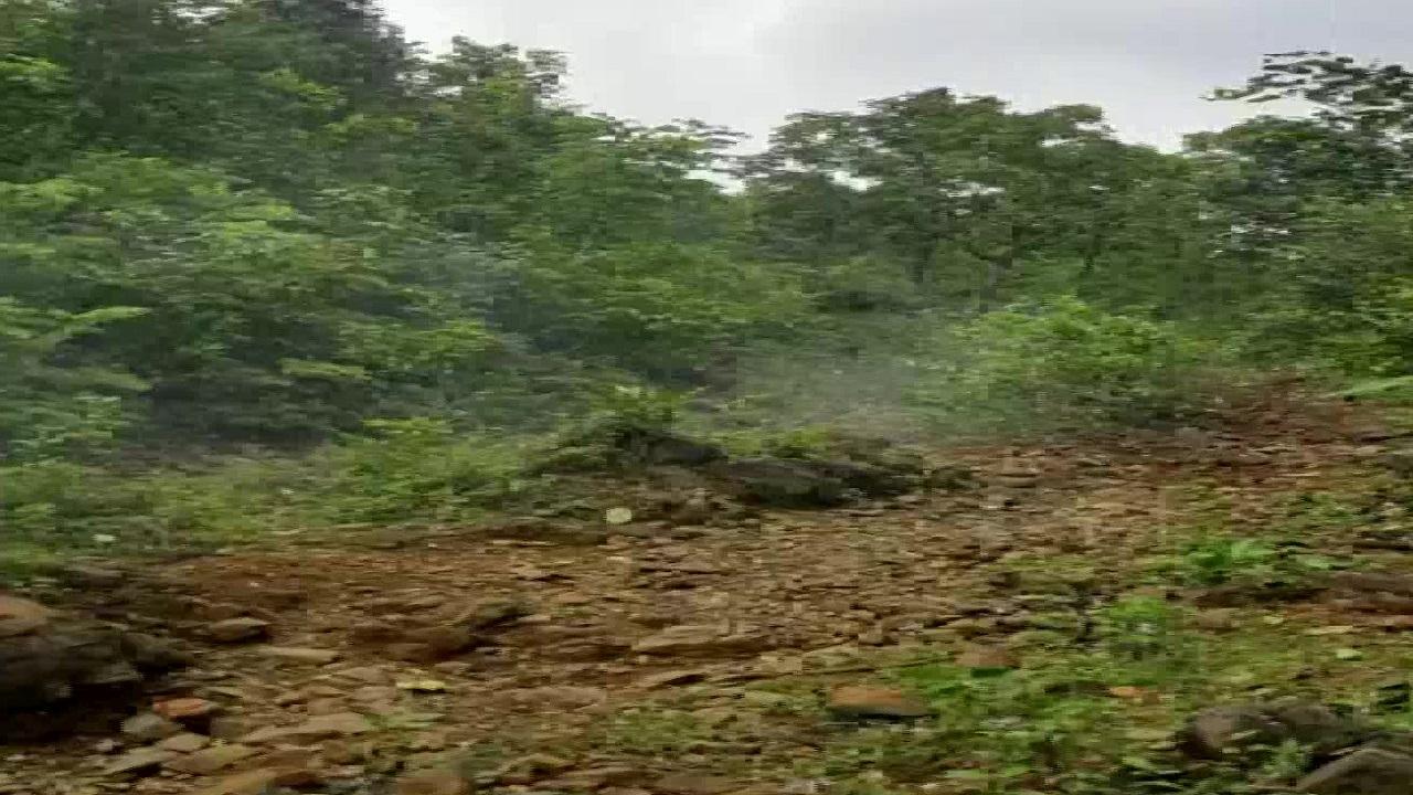 झारखंड: जमशेदपुर पुलिस ने एक बड़ी नक्सली योजना को किया विफल, सड़क पर बिछाए गए 14 लैंड माइंस बरामद