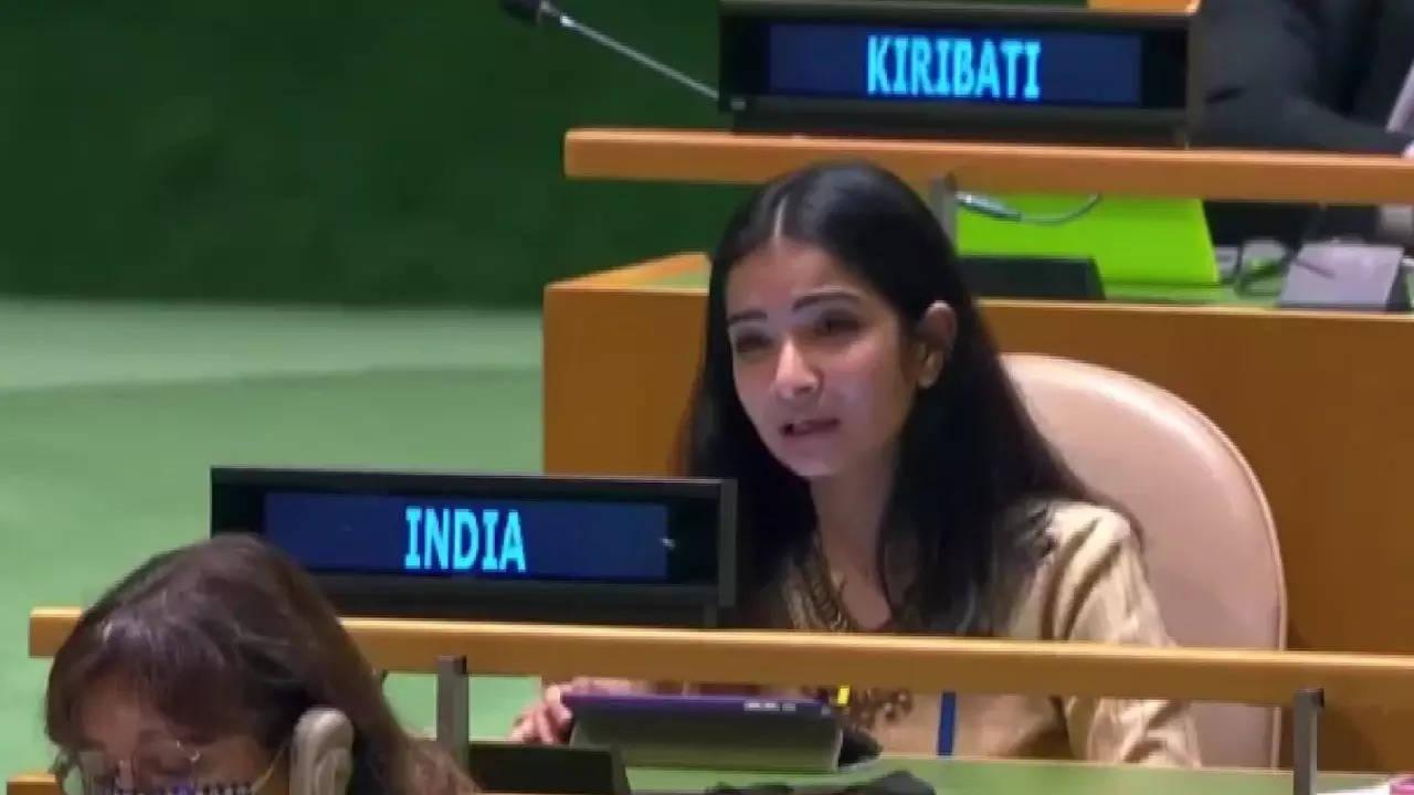 भारत ने UN में पाक को फिर धोया: 'आग भड़काने वाला देश आग बुझाने का नाटक करता है, भुगत पूरी दुनिया रही है'