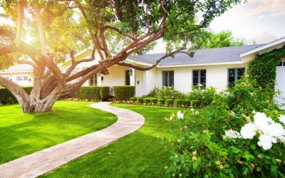 Now Available: The Essential Guide to Real Estate Showings for New Agents