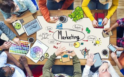 Now Available: Enhancing Your Marketing Strategy with ShowingTime