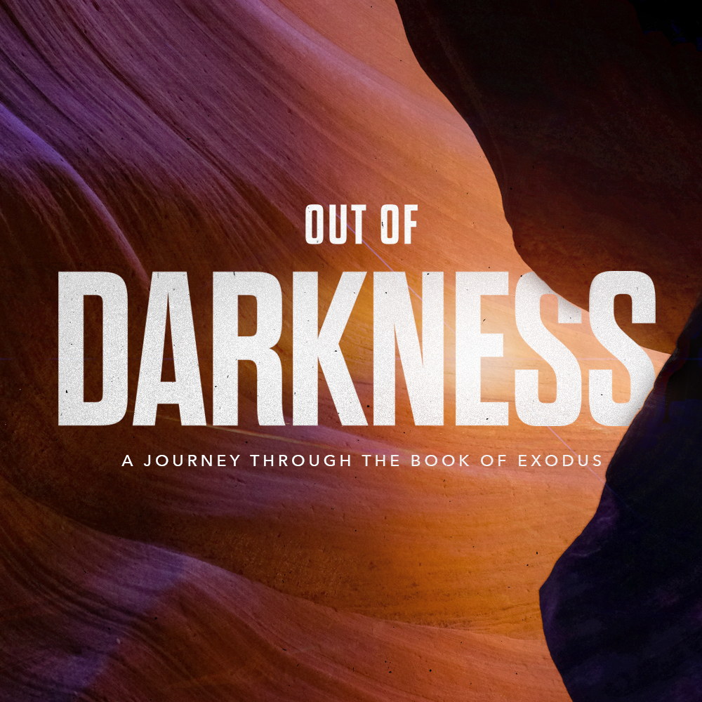 Out of Darkness: Week 6