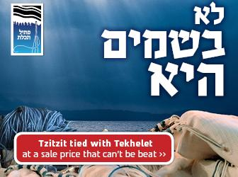 Parshat Shelach Sale