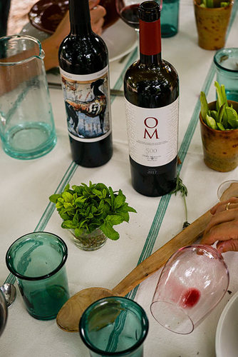 Visit to Oliver Moragues wineries for 6 people