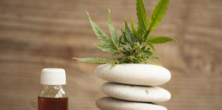 CBD hemp or Oil Extract