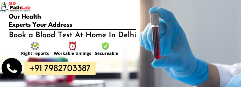Blood Test At Home In Delhi