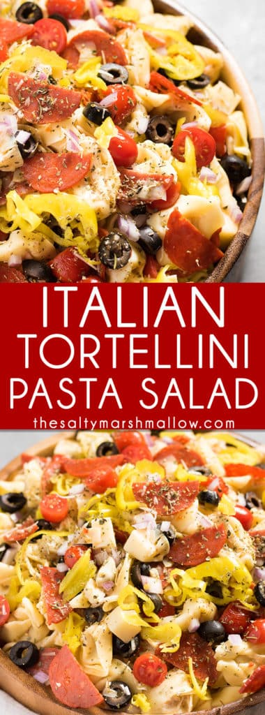Italian Tortellini Salad: Quick and easy Italian tortellini salad recipe! This Italian tortellini pasta salad is served cold and a delicious side dish for summer bbq's!