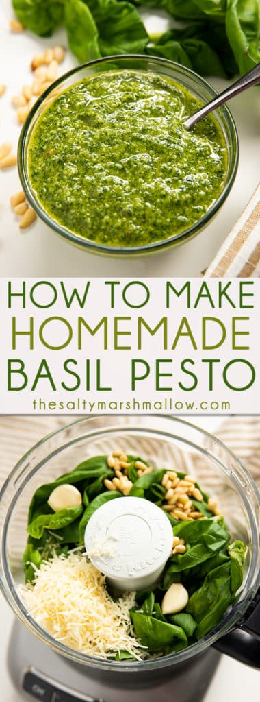 Homemade Pesto Recipe - An easy recipe for homemade basil pesto! Pesto is made from a mixture of fresh basil, garlic, cheese, nuts, and olive oil.  Find out how to make it at home! #pesto #pestorecipe #pestopasta #saltymarshmallow