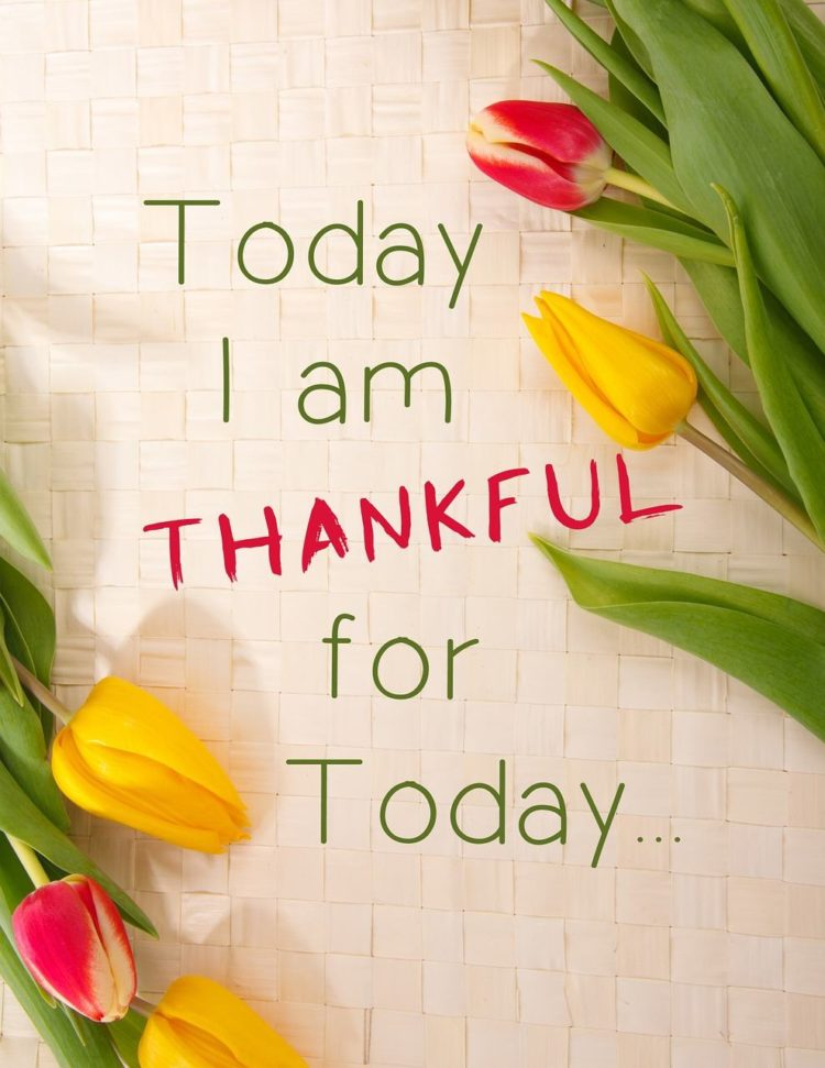 """""""Be Grateful, always. When you are Grateful every day for All that you Have, All that you Rece"""