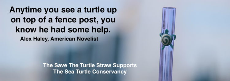 One of my favorite Cause Straws! Available at http://www.strawesome.com.turtle-slider