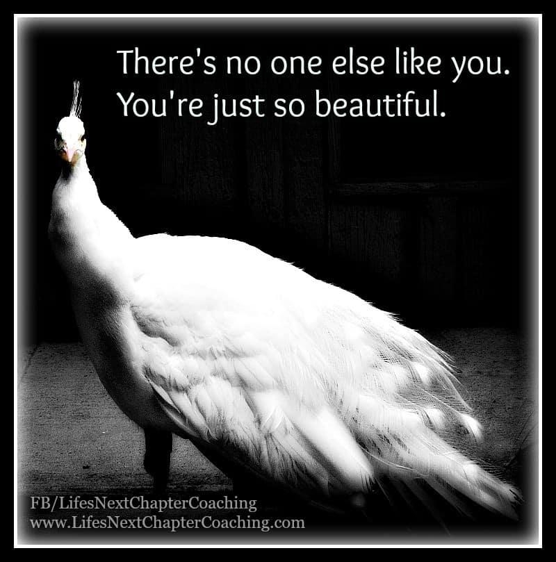 342 You're beautiful