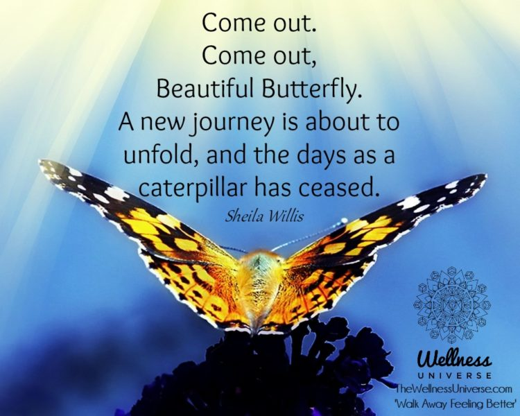 Come out. Come out, Beautiful butterfly. A new journey is about to unfold, and the days as a caterpi