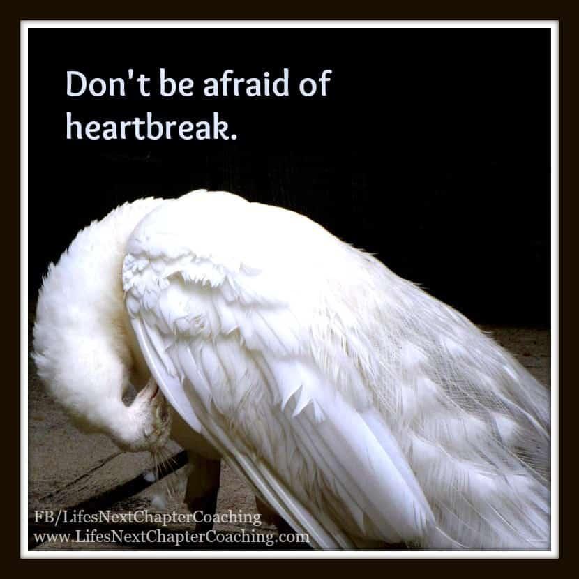 500 Don't be afraid of heartbreak