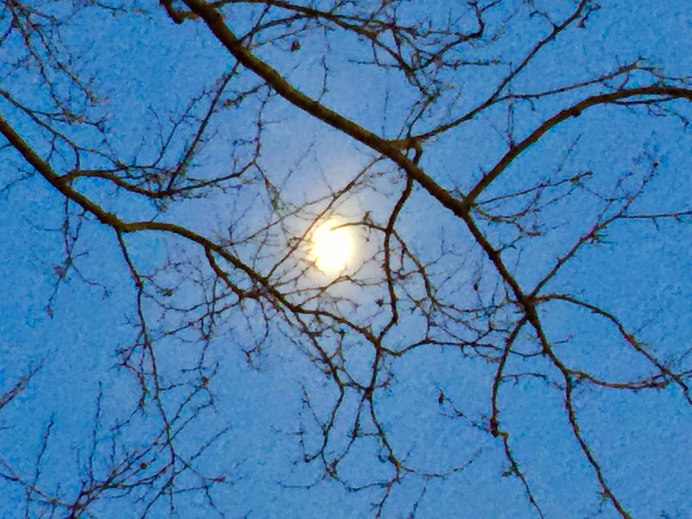 Magical Moon in Manhattan #nature_perfection #gratitude #moonshine #naturegram #WUVIP IMG_7037