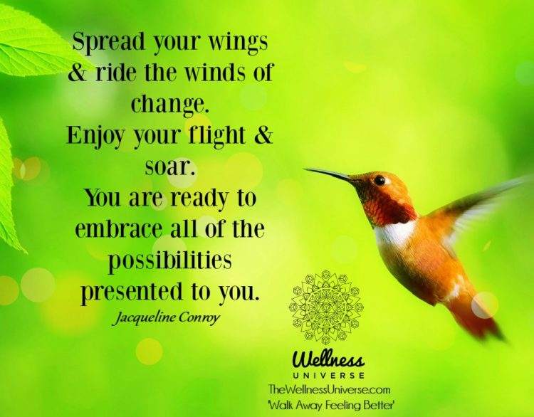 Spread your wings & ride the winds of change. Enjoy your flight & soar. You are ready to emb