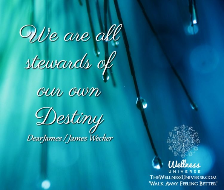 We are all stewards of our own Destiny. ~@dearjames #WUWorldChanger The Wellness Universe #WUVIP WU_