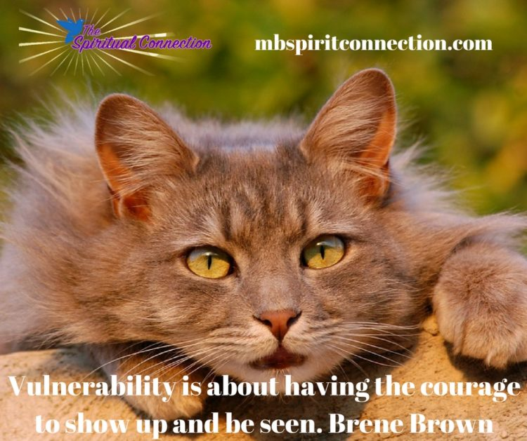 Vulnerability-Brene-Brown