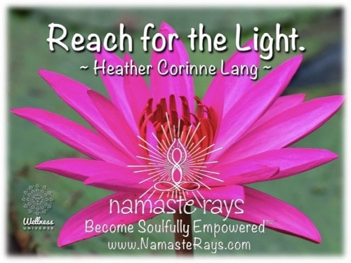 """Lotus Wisdom. Always reach and shine Light & Love from your Divine Core. """"Become Soulfully Emp"""