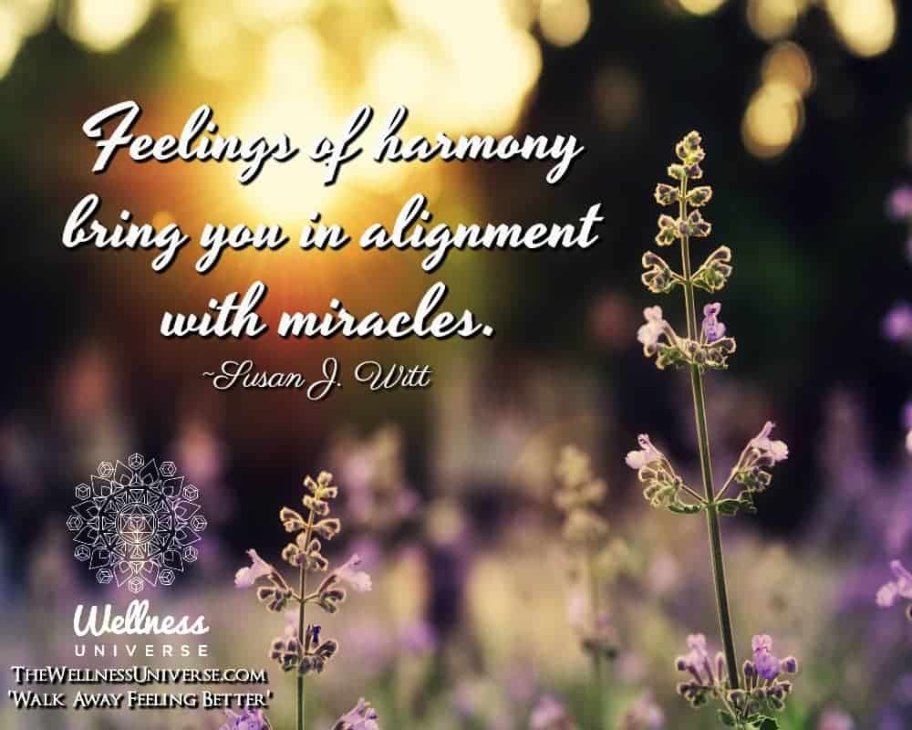 Feelings of harmony bring you in alignment with miracles. ~@susanjwitt #WUWorldChanger Feelings of h