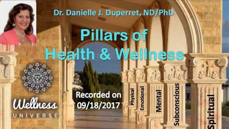 Recorded a new mini-class: Pillars of Health and Wellness: https://recordings.rna1.blindsidenetworks