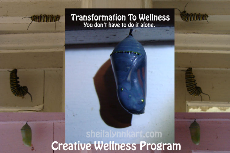 PROGRAM COST: $35 The Creative Wellness Program is Ready! This detailed video gives in depth informa