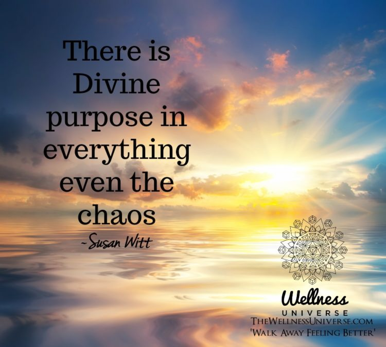 There is Divine purpose in everything even the chaos. ~@susanjwitt #WUWorldChanger https://www.faceb