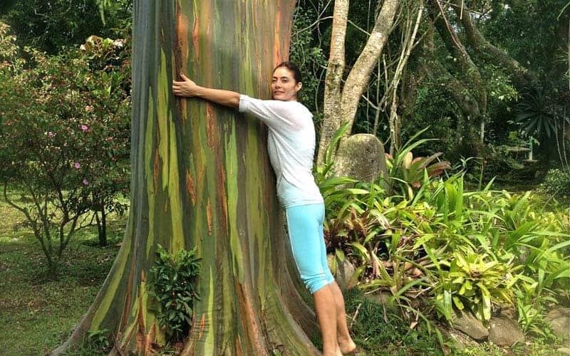 DHARMI_JOURNEY_Costa Rica DHARMI_Elements_Nature_Retreat_CostaRicaDHARMI_Elements_Nature_Retreat_Cos
