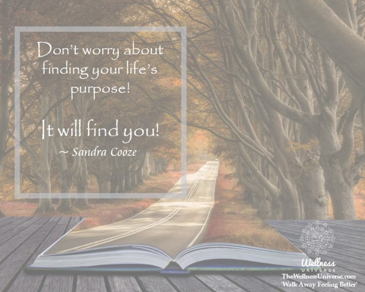 Don't worry about finding your life's purpose! It will find you! ~ @SandraCooze #WUWorldChanger