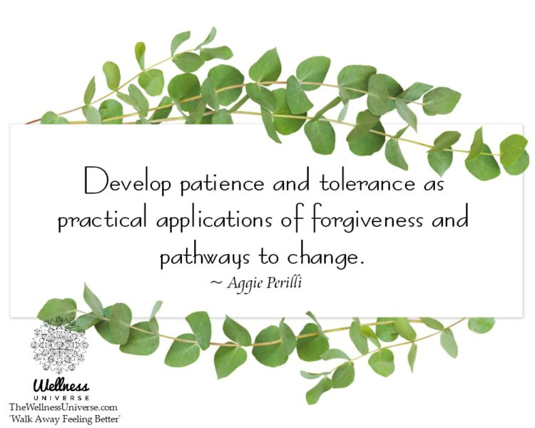 Develop patience and tolerance as practical applications of forgiveness and pathways to change. ~ @A