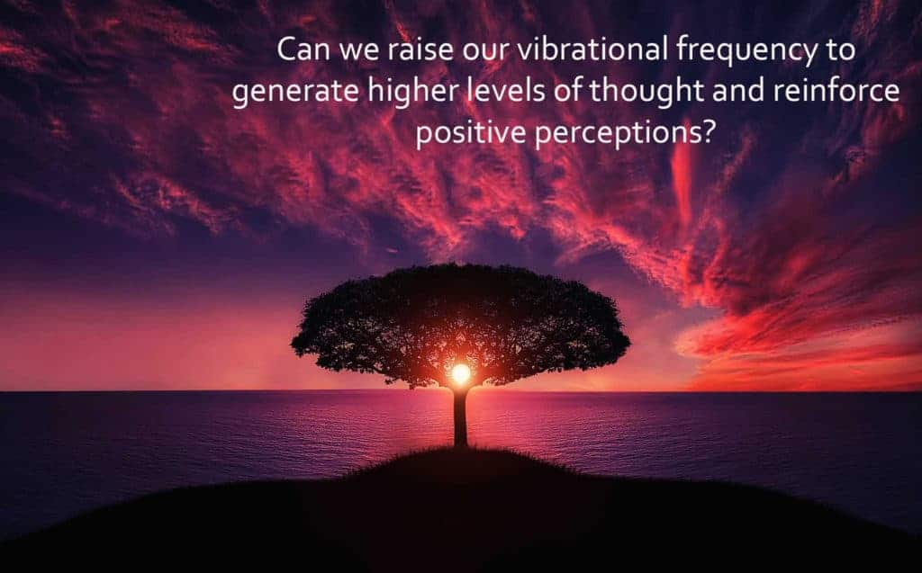 Learn more about reaching higher levels of thought at http://www.saradachiruvolu.com #meditation #yo