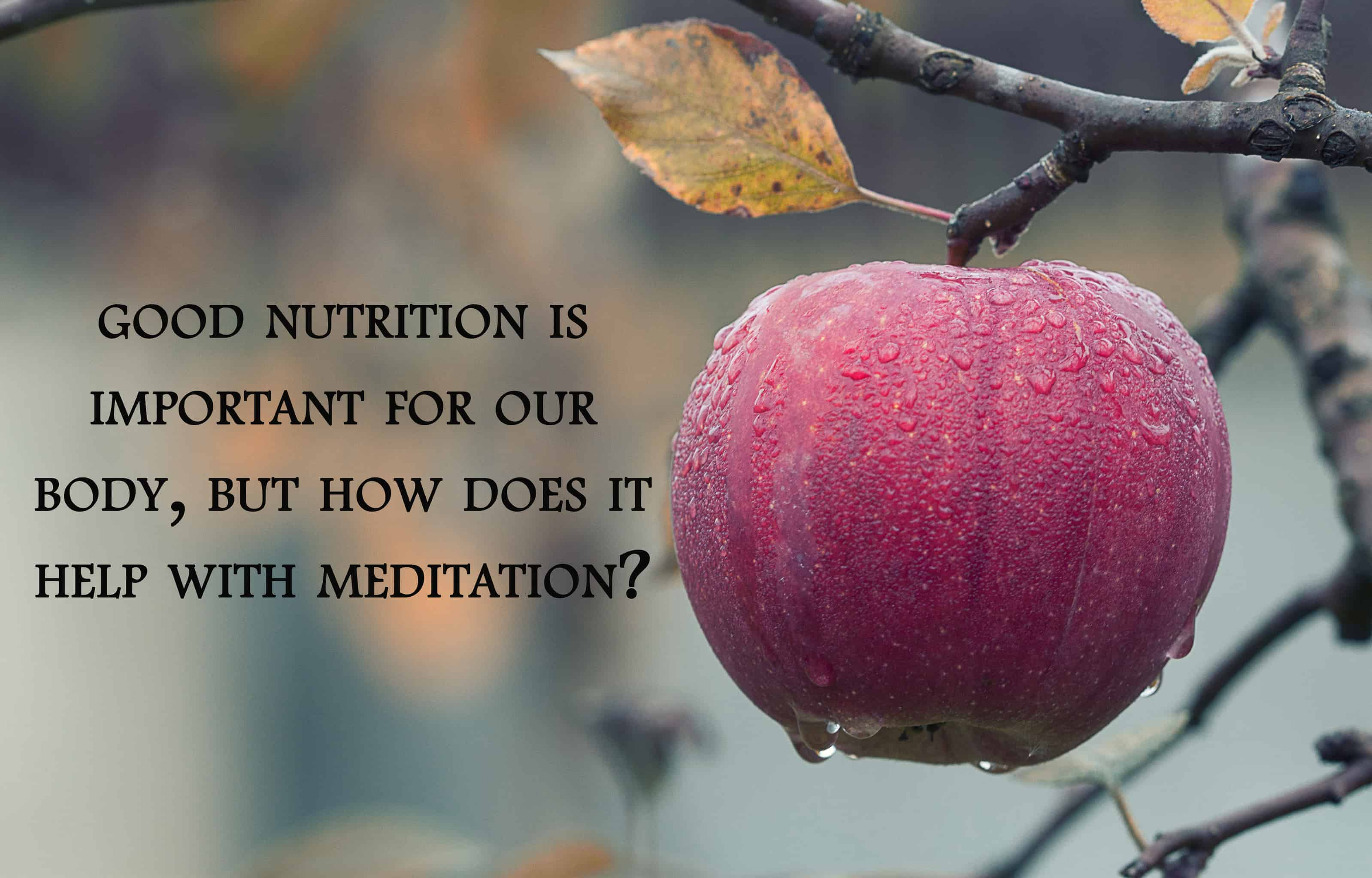 Learn more about how nutrition can impact the effectiveness of your meditation http://www.saradachir