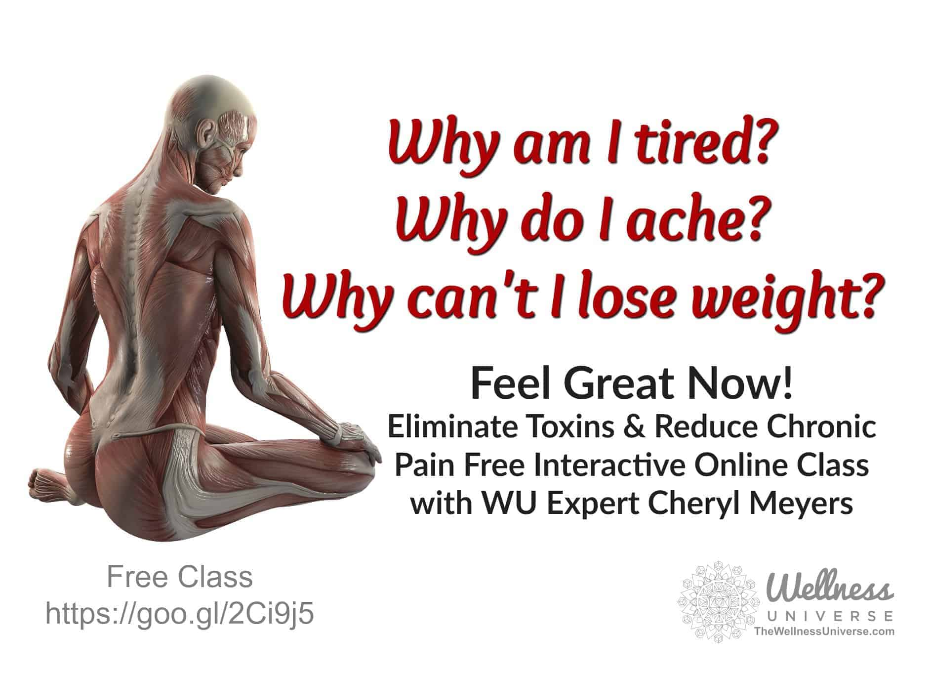 Reduce and eliminate toxins. What are they? How are they sneaking into our lives? If you have inflam
