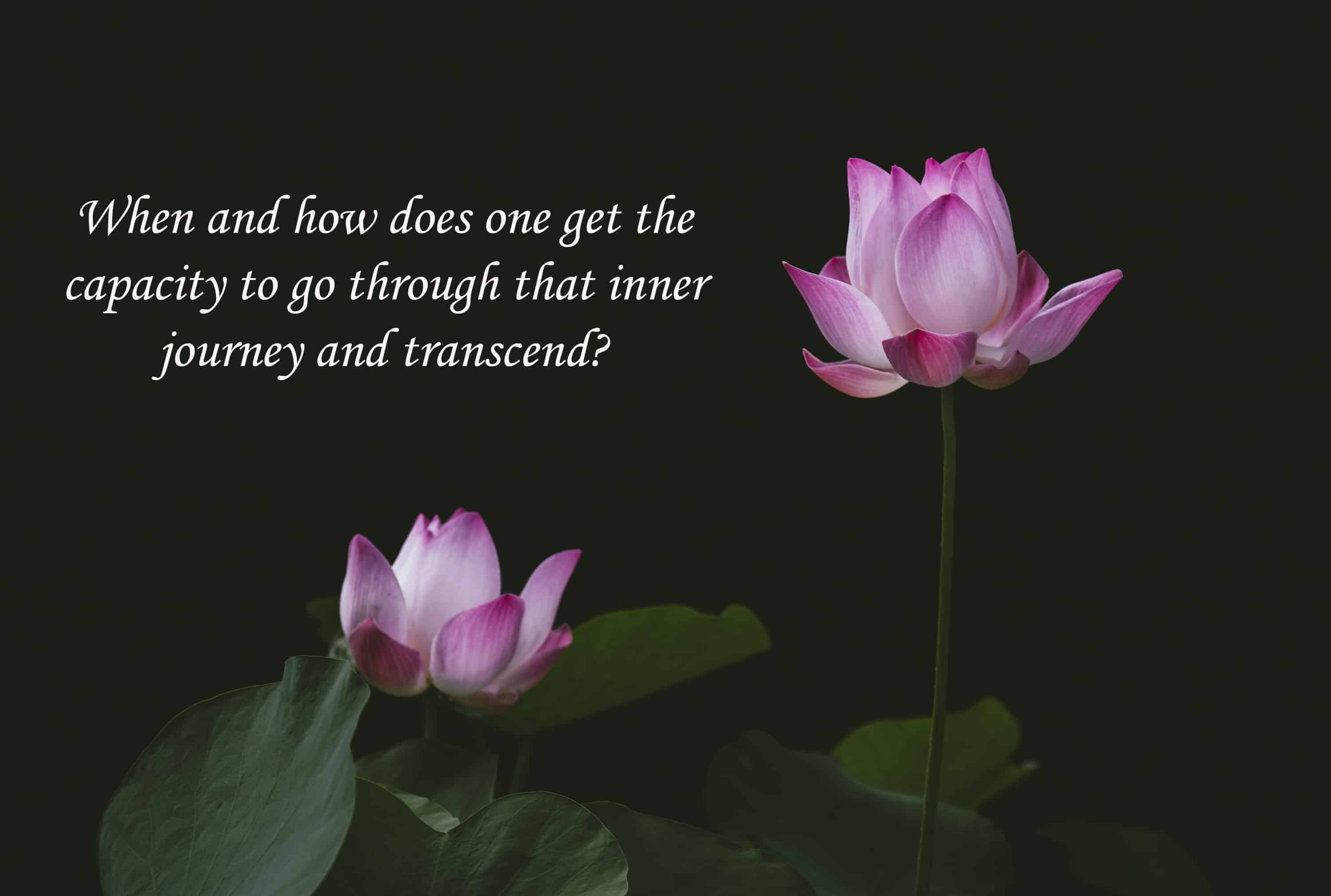 Learn more about your journey at http://www.saradachiruvolu.com #meditation #self_realization #welln