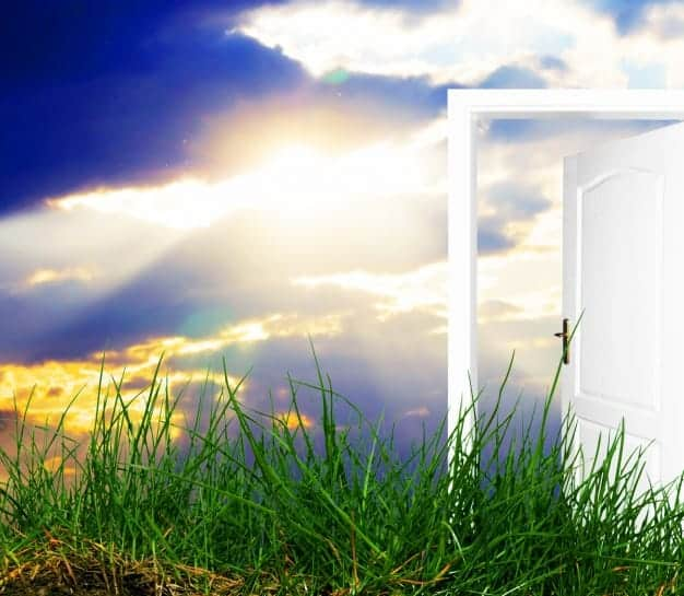 OPEN THE DOOR…52 Ways to Wellness, Wholeness, Happiness, Peace 52 weeks of support to open the