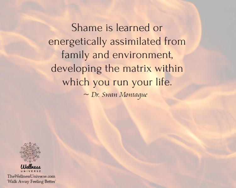 Shame is learned or energetically assimilated from family and environment, developing the matrix wit