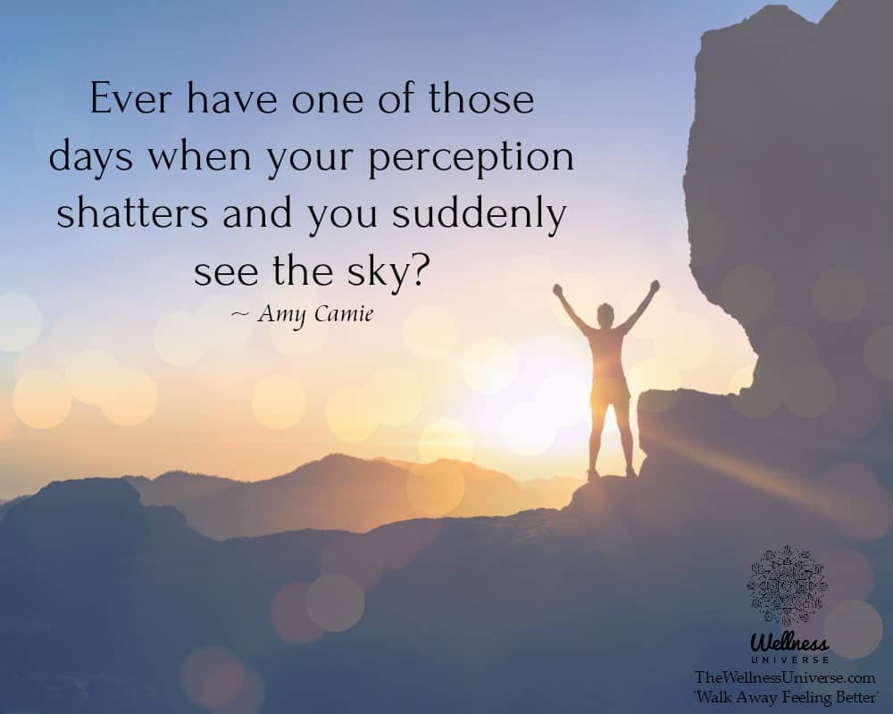 Ever have one of those days when your perception shatters and you suddenly see the sky? ~@AmyCamie #