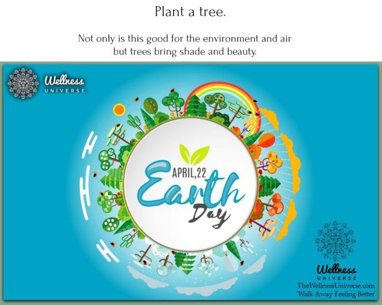 Plant a tree. Not only is this good for the environment and air but trees bring shade and beauty. Ex