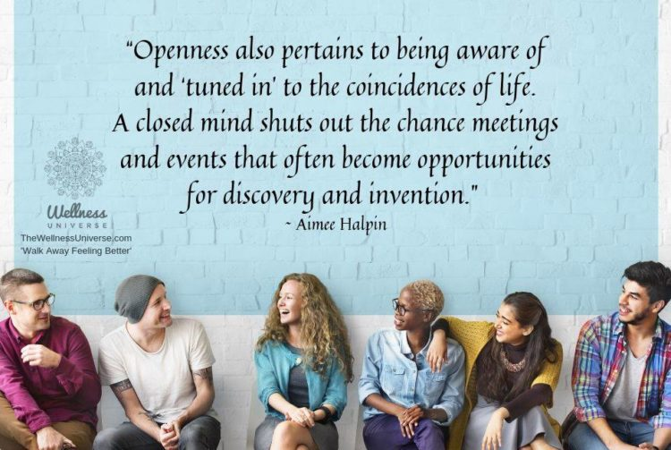 """""""Openness also pertains to being aware of and 'tuned in' to the coincidences of life. A closed"""