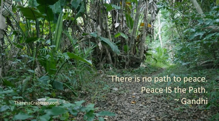SOUL CONNECTION 103 ~ PEACE IS THE PATH Although your life may be in turmoil, you have within the ab