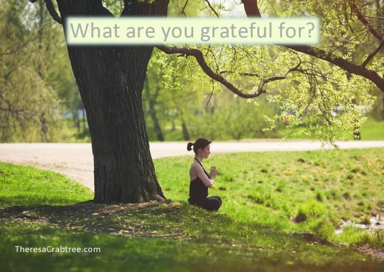 GRATITUDE MEDITATION If possible, do this gratitude meditation while in nature or your yard. If not,