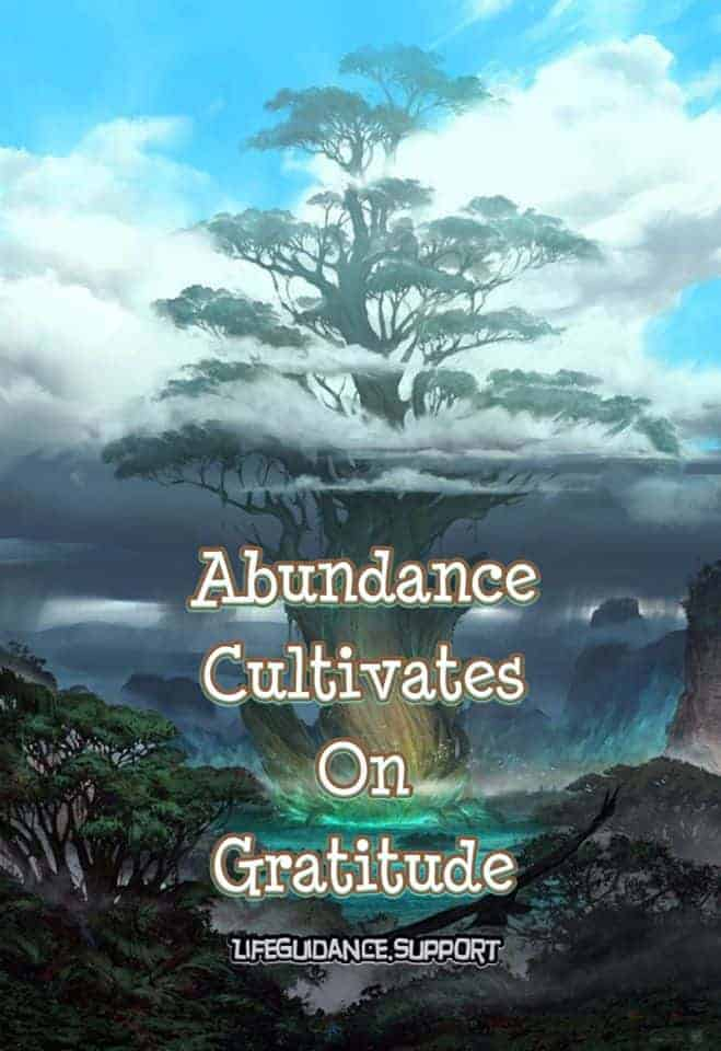 """Gratitude Sunday~ 12/01/19 Gratitude check today! """"Be such a grateful loving presence within y"""