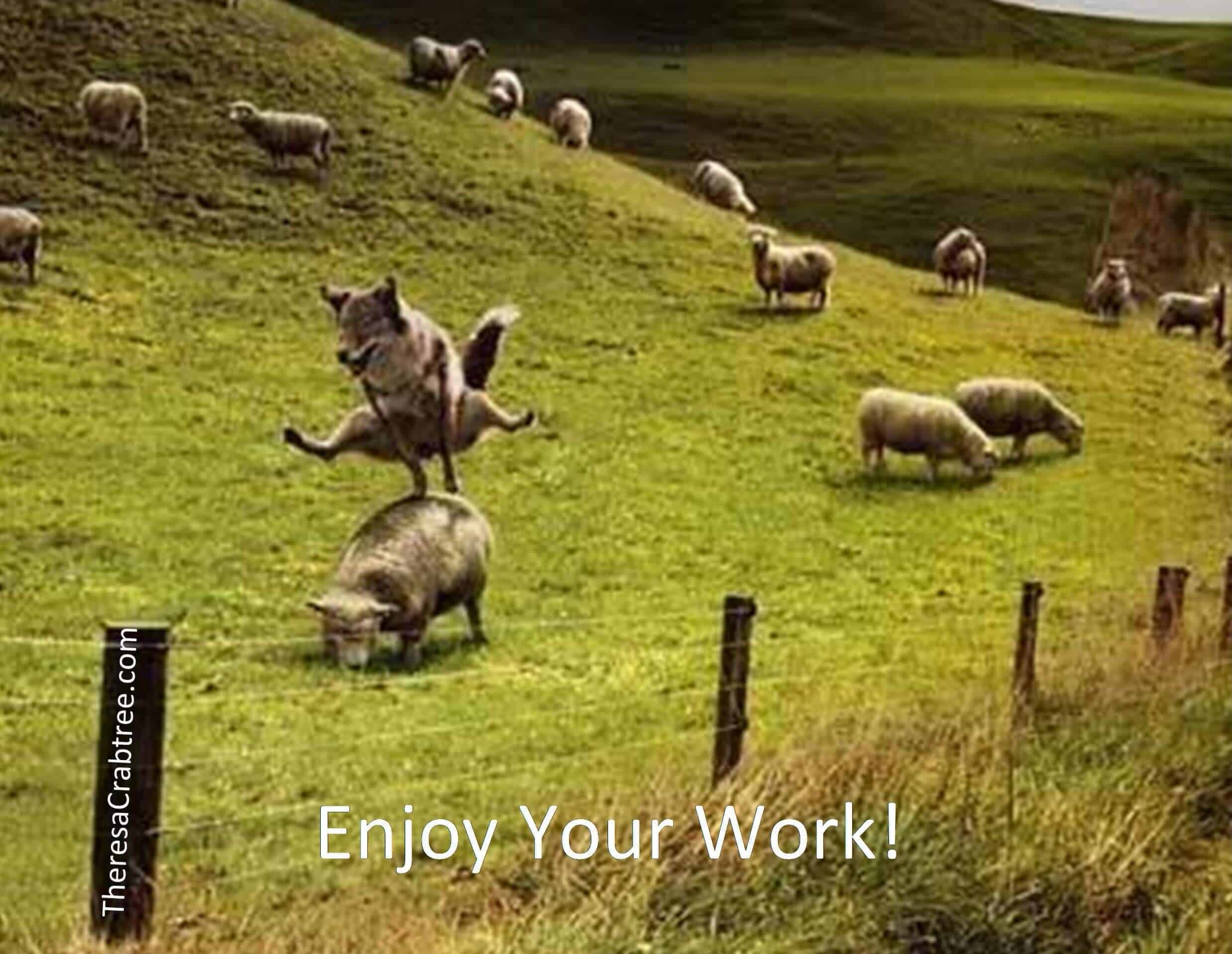 ENJOY YOUR WORK Do you enjoy your work? What is your passion? Can you answer this question? If not,