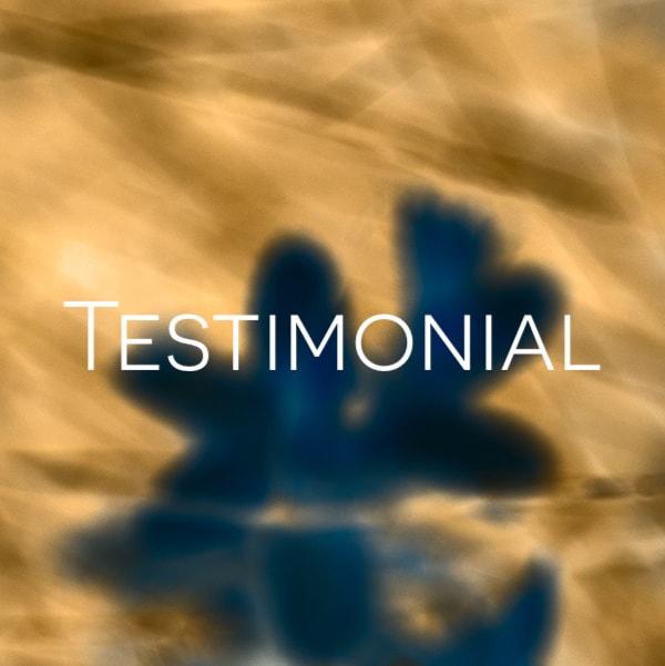 https://www.thewellnessuniverse.com/2020/03/10/dearjames-testimonial/ shutterstock_1169858470_Savelo