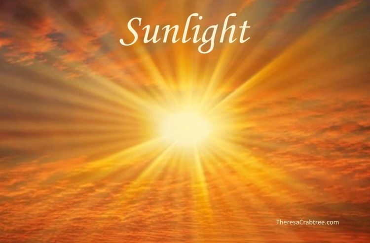 SUNLIGHT Welcome to this grand and glorious day! Take time to soak up the blessings and warmth of th