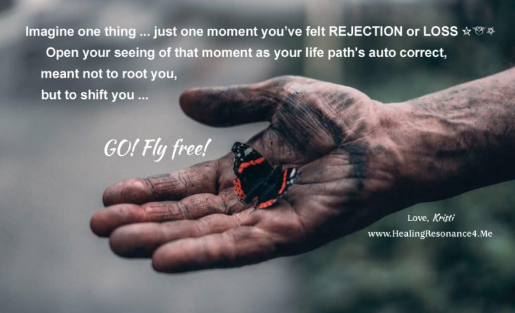 GO, Fly Free! Life IS Going According to Plan … This blog on life transitions, watching and tr