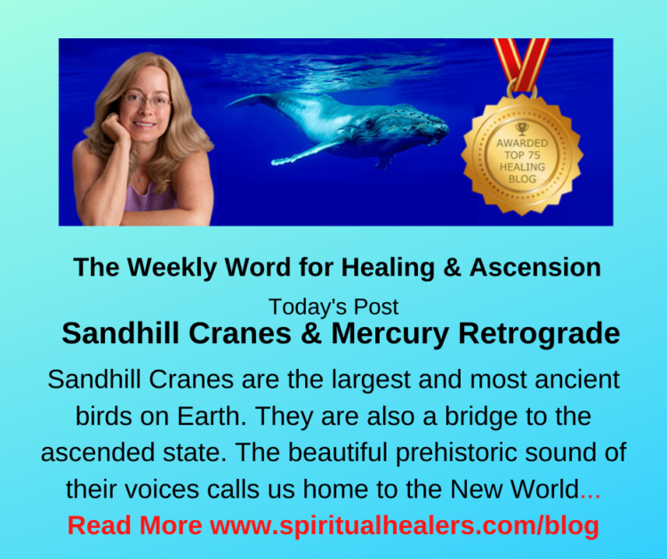 http://www.spiritualhealers.com/blog Weekly Word for Soc 10-16 -20