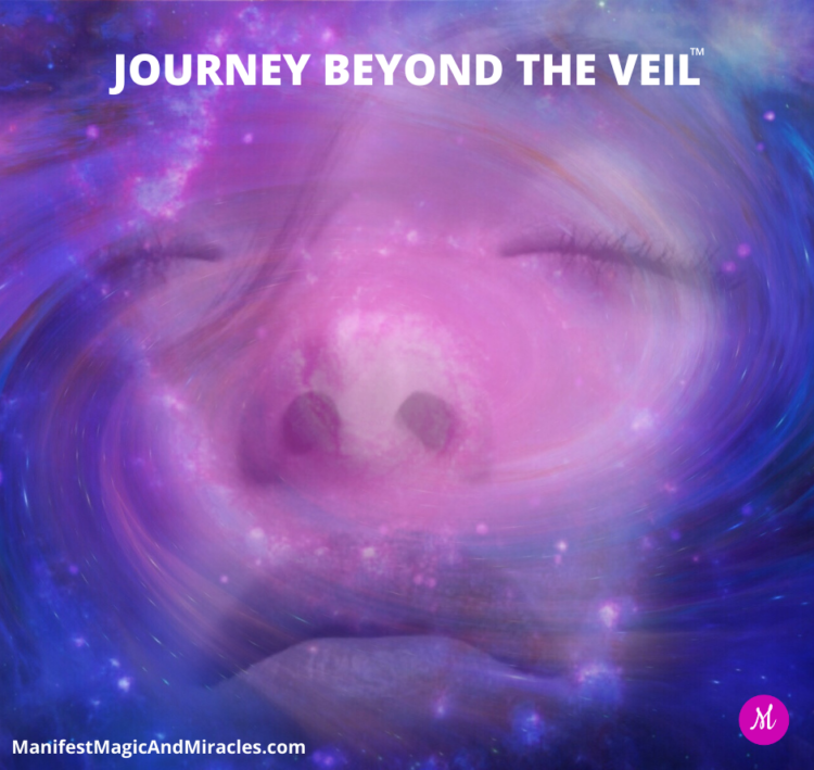 Are You Ready to Experience Next-Level Manifestations? Join us for our FREE Workshop: Journey Beyond